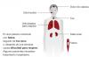 Coronavirus y personas mayores: ¿Estamos preparados para lo que viene?